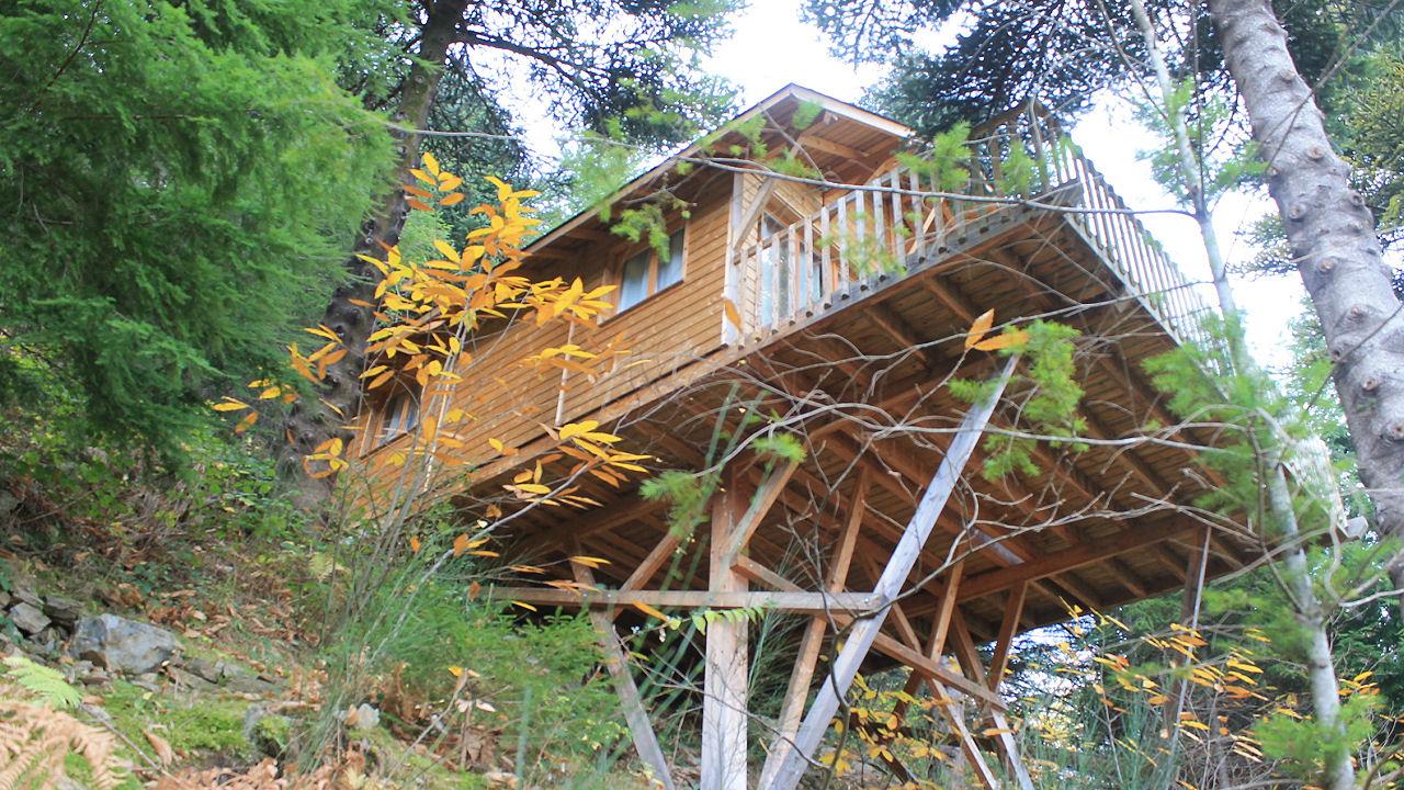Cabane perchée en forêt - Hebergement Insolite - Domaine Oz'Arbres