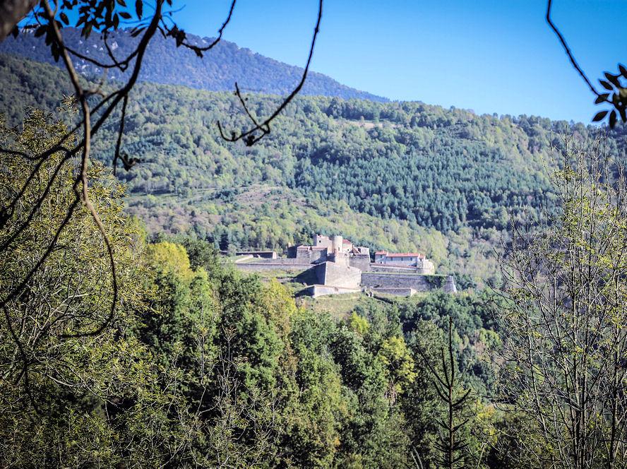 Vue sur le Fort Lagarde - Cabanes perchées dans les arbres Séquoia - Domaine Oz'Arbres