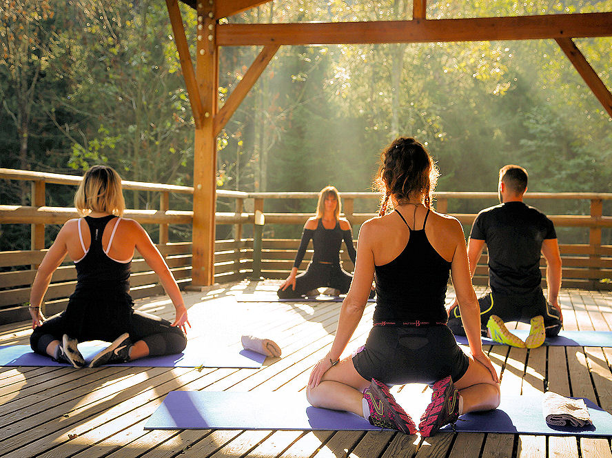 Sesión de Yoga - Domaine oZ'Arbres