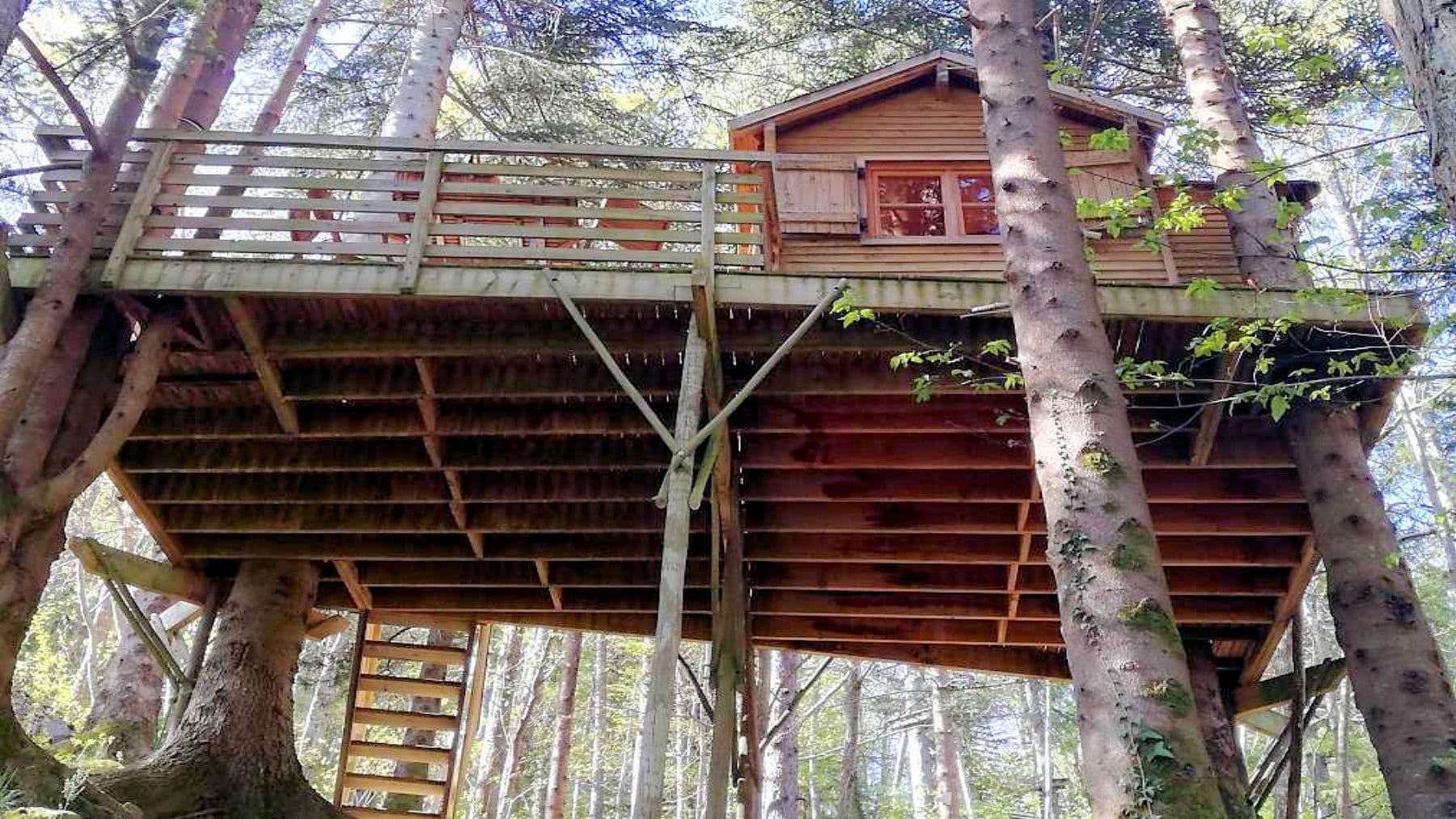 Cabane perchée dans les arbres - Hebergements Insolites - Domaine Oz'Arbres