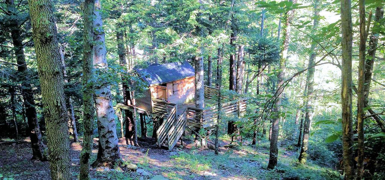 Cabane perchée dans les arbres - Hebergement Insolite - Domaine Oz'Arbres